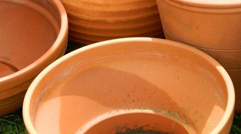 Hoe maak je terracotta potten schoon? - Bloempotten schoonmaken