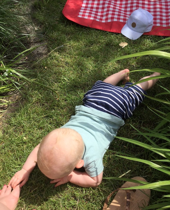 Hoe maak je de tuin kindveilig / babyproof?