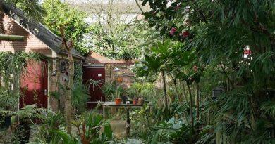 De exotische tuin van Rinus (72m²)