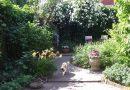 De Seizoenen tuin van Géra (60m²)