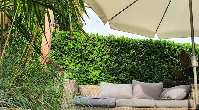 Zo laat je je tuin en planten gerust achter tijdens je vakantie!
