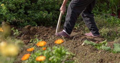 Engels tuinprogramma op tv: Garden Rescue