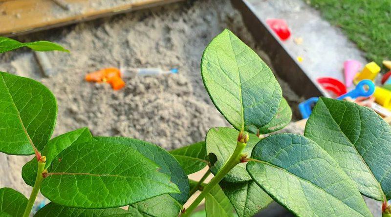 veilige tuin voor kinderen